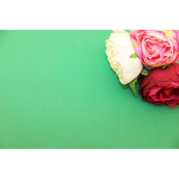 Фоамиран китайский (светло-зеленый) 1мм 48см*48см(Китай) C10/170